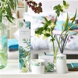 Designers Guild Geurkaars Tulipana Bergamot & Gardenia