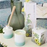 Designers Guild AMBER FOREST DIFFUSER